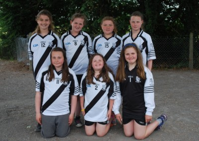 School Camogie 7 a-side 2014